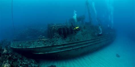 dive in best diving in bermuda scuba diver