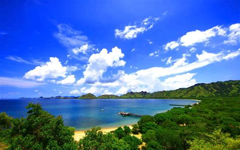 landscape nature pier forest island coast indonesia