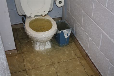 how to clean up flooded bathroom how to clean up flooded bathroom 28 images the flood