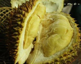 Bibit Buah Durian Montong situs resmi koperasi gapoktan citra niaga tani jual bibit