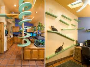 Cat Friendly Home Design 25 Awesome Furniture Design Ideas For Cat Bored Panda