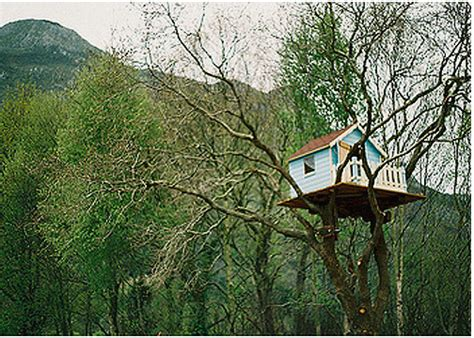 best tree houses design squish blog tree houses sustainable lifestyle do it yourself creative