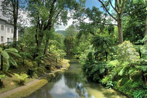 Terra Gardens azores gardens highlights of a horticultural tour