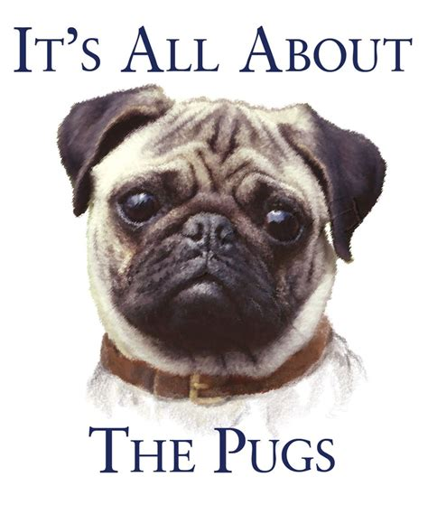 pug things it s all about the pugs pug for betty things pug and
