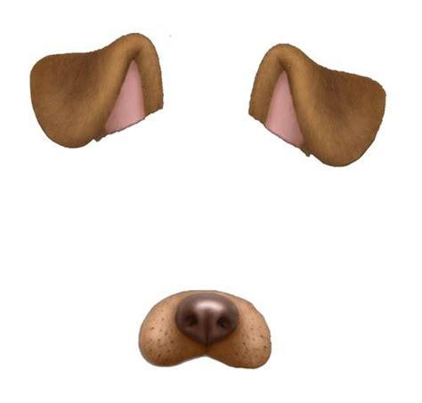 stop hating  dog filter snapchat filters png