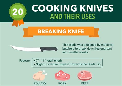 20 types of kitchen knives and their uses infographic