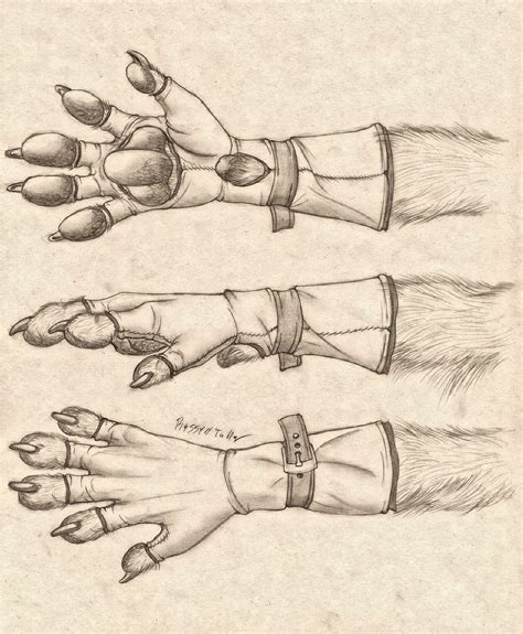 werewolf paw tutorial anthro paw glove design by russelltuller on deviantart