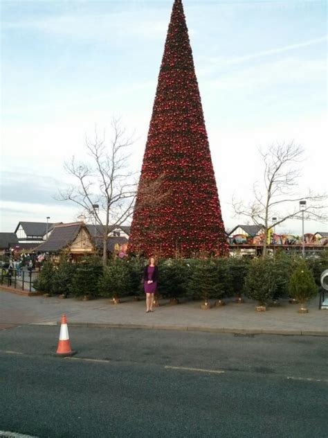 uk s largest christmas tree at cheshire oaks designer outlet