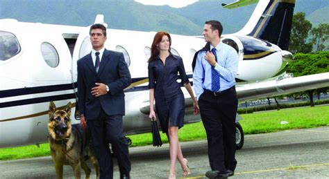 personal protection dogs personal protection dogs a growing trend for american families