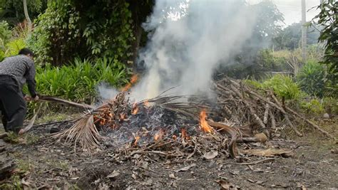 Is It Legal To Burn Wood In Backyard Burning Garbage In Your Backyard Could Get You In Trouble