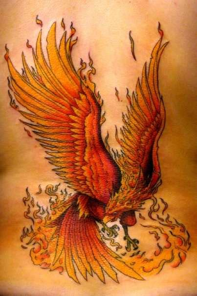 fire phoenix tattoo designs indian