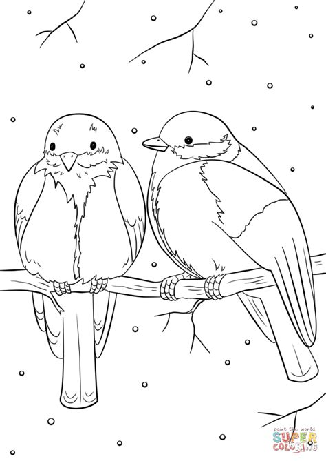 free coloring pages animals in winter winter birds coloring page free printable coloring pages