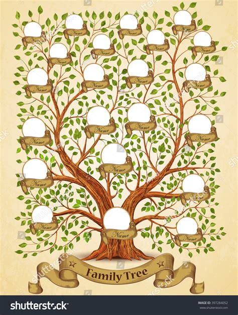 Family Tree Template Vintage Vector Illustration Stock Vector 397284052 Shutterstock Stock Vector Family Tree Template With Portraits Of Relatives And Place For Text On Green