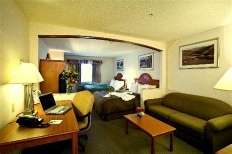 comfort suite schaumburg comfort suites schaumburg updated 2017 hotel reviews