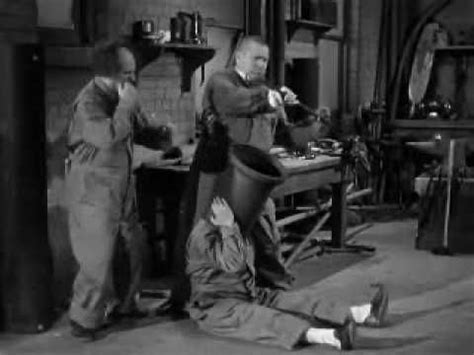 pin by emily brady on the three stooges