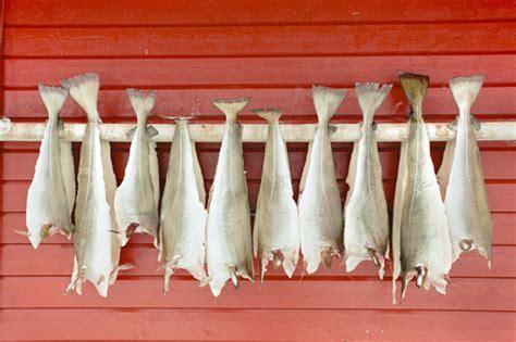 baccala bagnato baccal 224 e stoccafisso figli dello stesso pesce