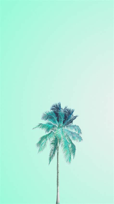 wallpaper blue mint mint green palm tree iphone wallpaper phone background