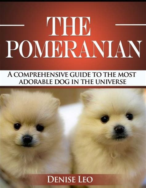 pomeranian guide best 25 pomeranian dogs ideas on pomeranian pomeranian puppy and baby
