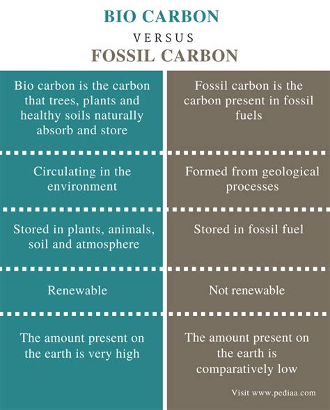 Renewable Difference Detox Shoo by Difference Between Bio Carbon And Fossil Carbon