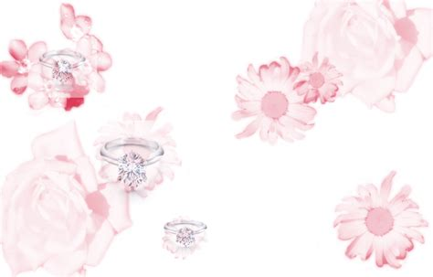 Wedding Background Pink by Wedding Flowers Backgrounds Wallpaper Cave