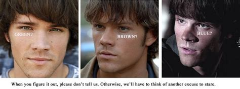 jared padalecki eye color best 25 jared padalecki ideas on jared