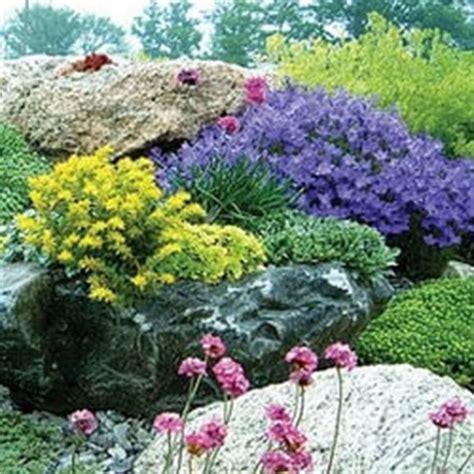 Garden Center Yarmouth Me by Plainview Farm Perennials Local Services