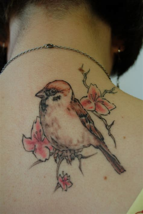 meaning of sparrow tattoo sparrow tattoos designs ideas and meaning tattoos for you