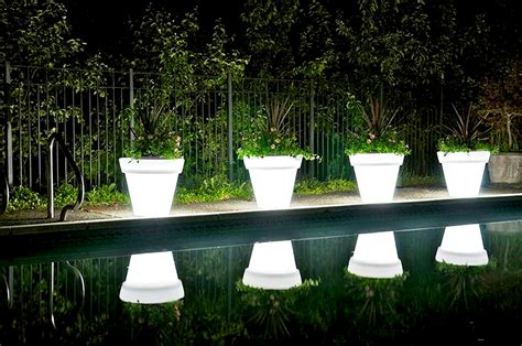Lighted Planters by Interesting Facts And Useful Info About Plants Snaplant