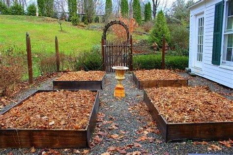 Best Soil For Raised Beds by 224 Best Images About Vegetable Garden Ideas On