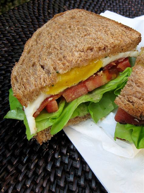 Sandwich T b e l t bacon egg lettuce tomato sandwich revisited