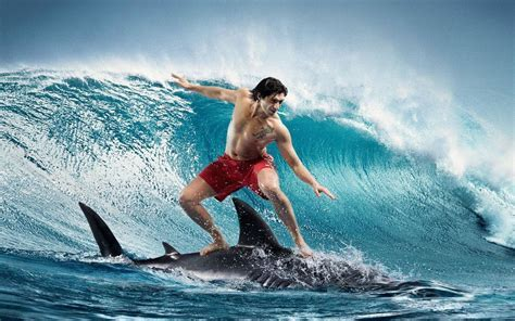 Extreme sports   surfing on a shark