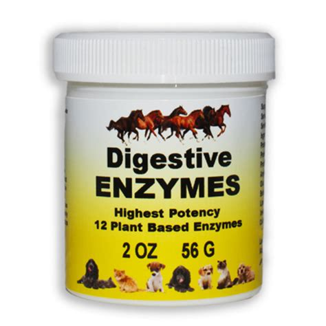Cat Detox Enzymes by Digestive Enzymes For Cats And Dogs Supplements For Your