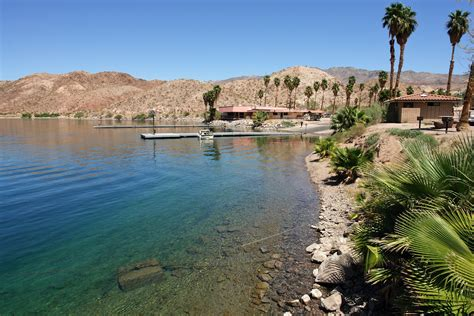 Lagie Mede file lake mead willow 3467675561 jpg wikimedia commons