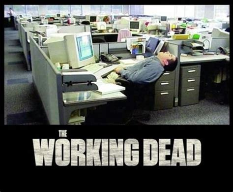 Sleep At Work Meme - 1000 images about office memes on pinterest funny work