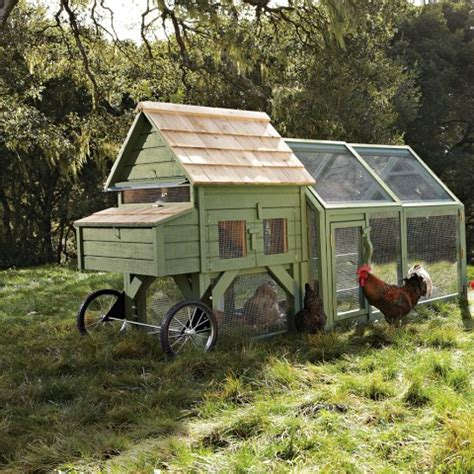 11 snazzy chicken coops for backyard poultry farmers