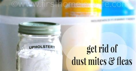 how to get rid of dust mites in couch homemade upholstery cleaner see more best ideas about