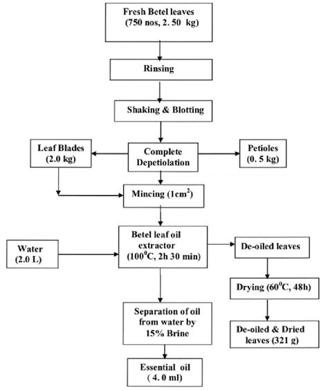 Process And Material Flow Chart For Extraction Of Essential Oil From Download Scientific Material Flow Chart Template