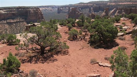 the cliffs books book cliffs view colorado national monument u s