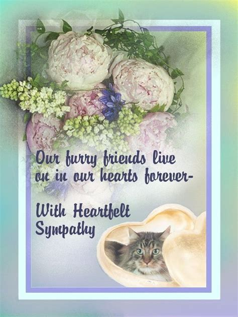 sympathy verses we and pet loss on