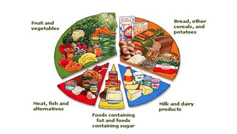 Square Pie In The Eco Circle by Food Pie Chart Flexischool Experience Special Education Ph