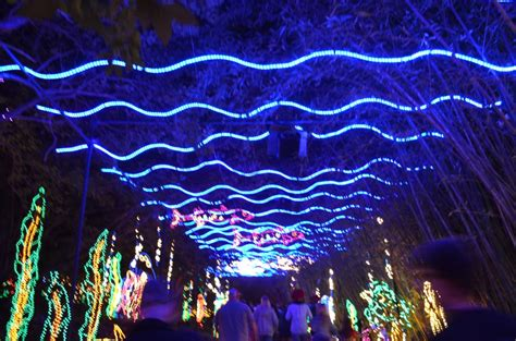 bellingrath gardens christmas lights alabama discoveries 4 bellingrath gardens magic christmas