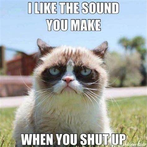 Funny Grumpy Cat Memes - grumpy cat