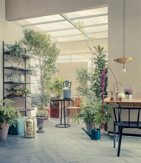house plants interior design house plants interior design ideas