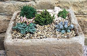 Miniature Plants For Sale by Bbc Gardening Gardening Guides Techniques Make A