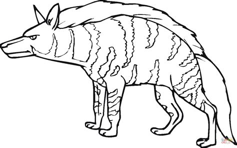 Hyena Coloring Pages striped hyena coloring page free printable coloring pages