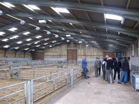 lambing shed layouts    shed blueprints