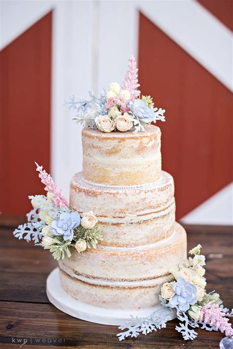 11 Cake Ideas for Any Wedding   Orlando Wedding