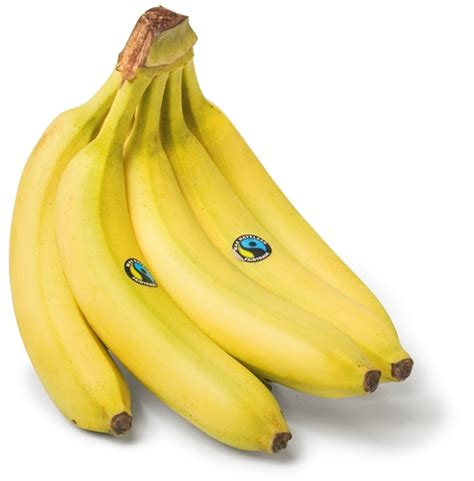 banana fairtrade otc holland : otc holland