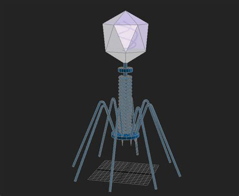 membuat model virus 3d bacteriophage virus 3d model max cgtrader com