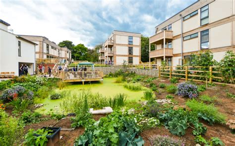 What Is Housing by Cohousing Archives Designurban Design